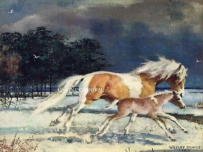 RARE CHINCOTEAGUE PONY MISTY & SON FOAL ART XMAS or NOTE CARD BY Wesley Dennis