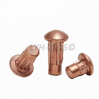 M2 M2.5 M3 Round Pan Head Knurling Copper Solid Brass Rivets Fasteners