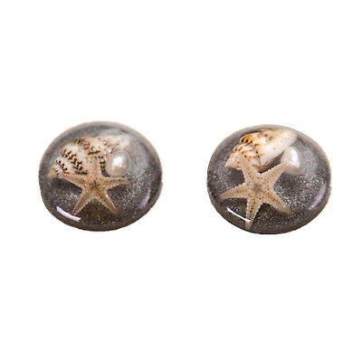 5pcs Round Resin Shell Starfish Flatback Resin Cabochon fit for Cabochon setting