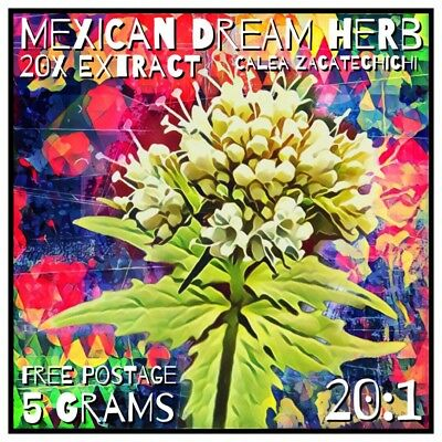 Mexican Dream Herb| (Calea zacatechichi) 20x Extract Powder [5 Grams]