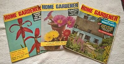 Three vintage Home Gardener magazines from 1966. Lots of interesting info.