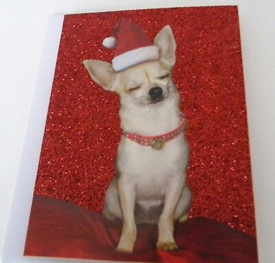 15cnt Glittered Chihuahua Christmas Holiday Cards