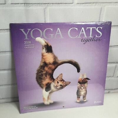 Yoga Cats Together 2018 12 x 12 Inch 18 Month Square Wall Calendar, Kittens.