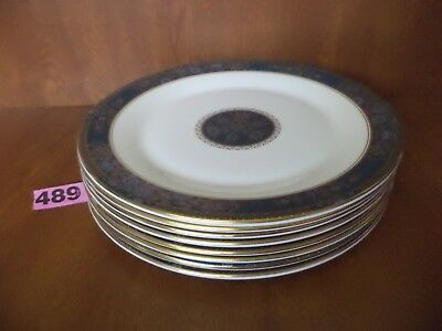 UNUSED Royal Doulton CARLYLE - 8 x 10 3/8 inch or 26.5 cm Dinner Plates