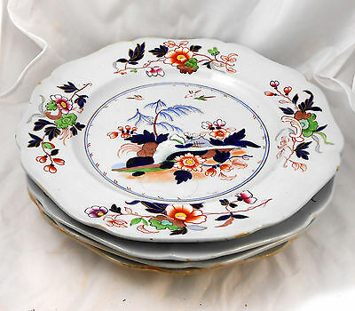 1835-1840 J Ridgway Imperial Stone China (4) DINNER PLATE SET Chinoiserie Gaudy