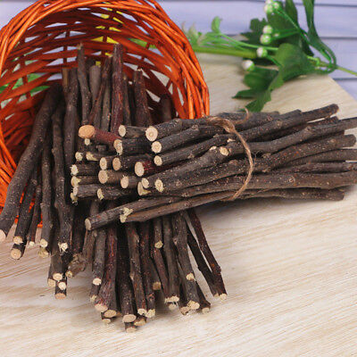 50g/Set Pets Apple Wood Chew Stick Grind Teeth Toy For Small Animal Supplies