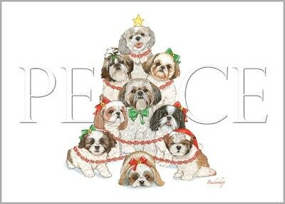 Shih Tzu Christmas Card 5 x 7 with Envelope