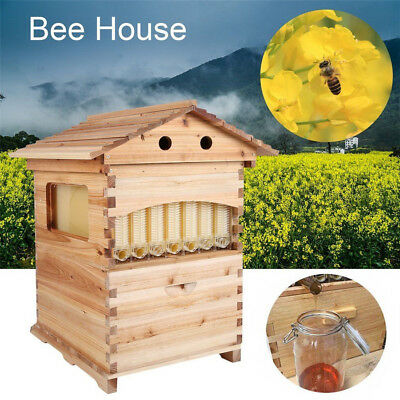 Double Beehive Super Beekeeping Brood House Box For 7 Auto Honey Bee Hive Frames