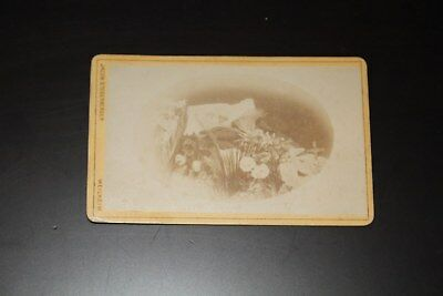CDV antique victorian old photo postmortem mourning post mortem  funeral