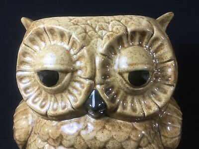 Charming Vintage Large Ceramic Brown Two Faced Owl Vase Planter Double Sided