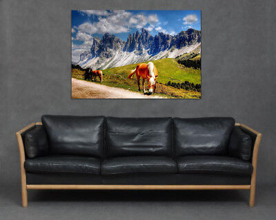 Mountain Horse Stunning Scenic Landscape Equestrian Art Print Canvas Lover Gift
