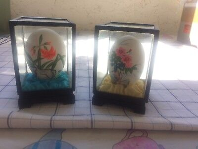 Vintage pair Chinese floral hand painted eggs in display cases - very pretty