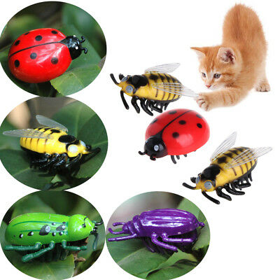 Interactive Electric Pet Playing Cat Toys Kitten Training Simulation Insect