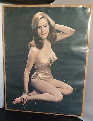 1960s Poster beautiful mystery woman 14 by 18