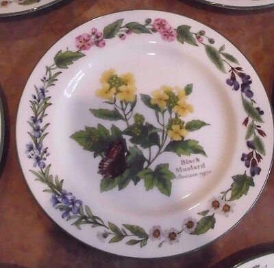 "ROYAL WORCESTER-WORCESTER HERBS CHINA Bread & Butter Plate ""Black Mustard"""