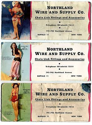 3 > Northland Wire & Supply Chain Link Fence Buffalo, Ny Pin Up Girl Ink Blotter