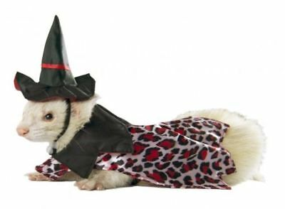 Marshall Ferret Toy Dog Fashion Witch Hat Jacket Costume - Witch