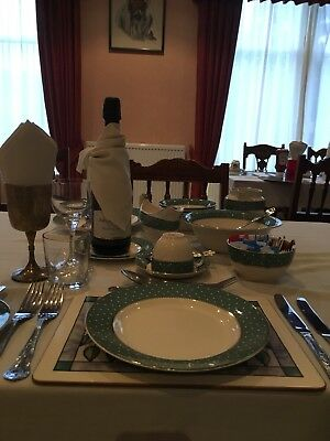 Vintage Ridgway 'conway Polkadot Green Dinner Set 39 Pieces