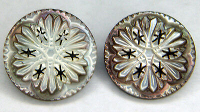 """Set Of Two Beautiful Carved & Pierced Mother of Pearl Buttons 1""""Dia Great Color"""