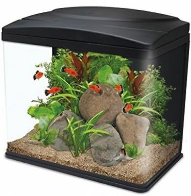 Interpet Fish Box LED Aquarium Fish Tank, 30 L