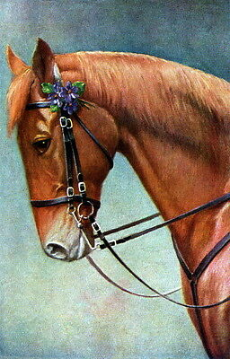 Vintg Art~Chestnut Horse with Purple Violets Flowers in Bridle~NEW Lg Note Cards