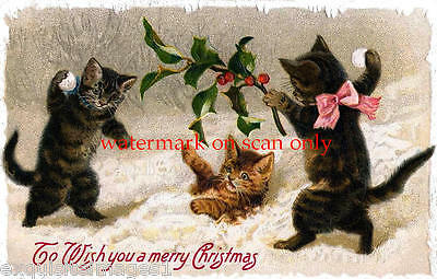Antique Art~Three Christmas Kittys,Kittens, Cats~Snow~Holly~NEW Large Note Cards