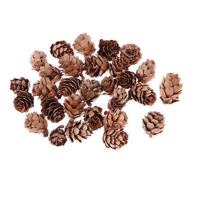 30x Small Natural Dried Pinecones Home Party Hanging Ornament XMAS Decor