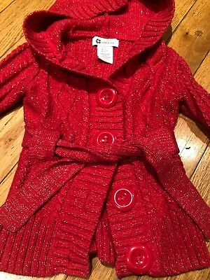 Willow Blossom Sweater Girl 3 3T Pink Sparkle Sweater Fall Winter Hooded EUC!!!