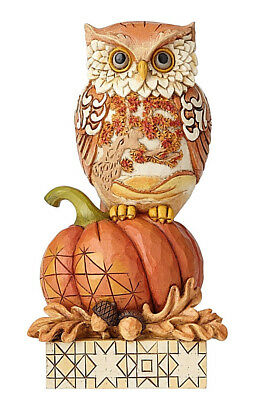 Jim Shore*HARVEST OWL on PUMPKIN*New 2018*THANKSGIVING*Whoo Loves Autumn*6001542