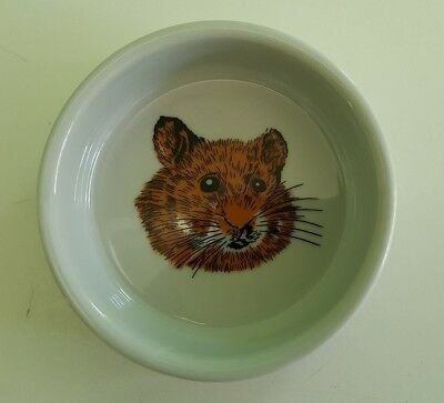 Two small pet or guinea pig feeding bowls
