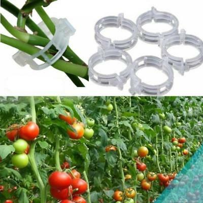 100PC Tomato Clips Trellis Garden Flower Vegetable Vine Fixed Clip Plant Support