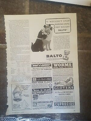 1938 print ad-I wouldn't stop barking until they bought Balto Dog Food