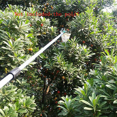 Fast Picking Tools Fruit Picker Silver For Apple Peach Pear Orange 1/2/3Pcs