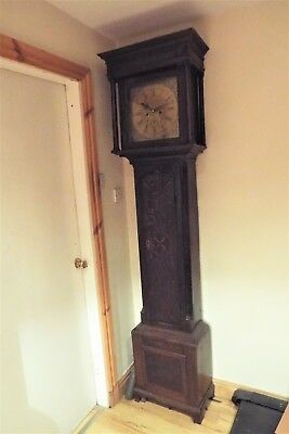 Long case Clock brass faced 8 day movement