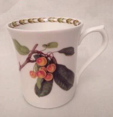 Queens Royal Horticultural Society Hookers Fruit Mug Cup White Cherry Cherries
