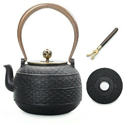 Nanbutekki tetsubin Japanese teapot Antique JAPAN F/S