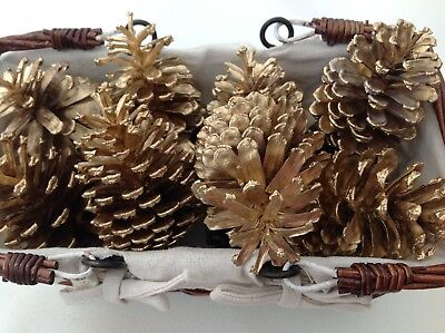 Gold pine cones - craft - wedding -Xmas decor - golden painted FREE POSTAGE -