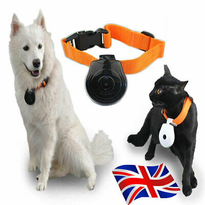 Dog Cat Puppy Pet Mini Cam Camera Camcorder 480P Collar Video Recorder Monitor