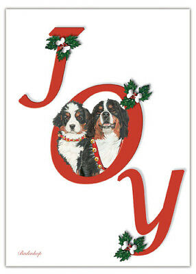 Bernese Mountain Dog Christmas Cards Set of 10 cards & 10 envelopes