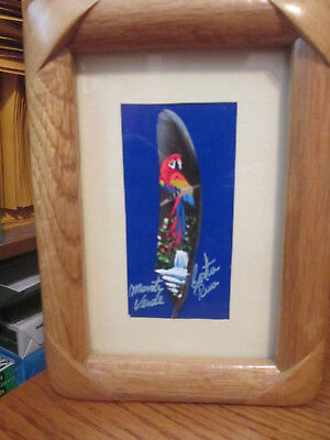 """Costa Rica Monte Verde """"Parrot On Feather"""" Picture 4"""" by 8"""" Wood Frame"""