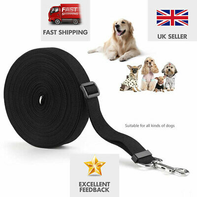 15m /50ft Long Nylon Pet Dog Cat Puppy Tracking Training Obedience Lead Leash