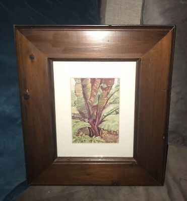 Vintage Original Leaves Garden Banana Plat Watercolor Painting UnSigned  Framed