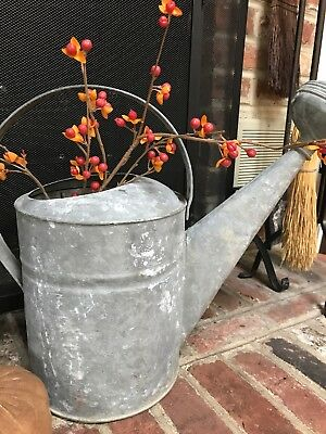 Old Vintage Galvanized Garden Watering Water Can