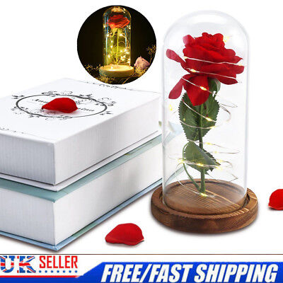 Halloween Beauty and The Beast Rose LED Light Glass Dome Gold Flower Forever CN