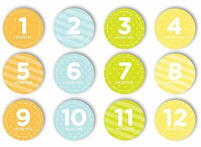 Tiny Ideas First Year Monthly Milestone Photo Sharing Baby Stickers, Neutral