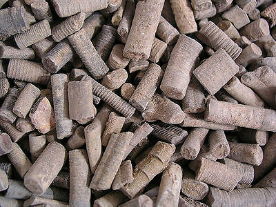 Crinoid stem fossils Devonian age 1/8 pound lot 20 to 30 pieces North Africa