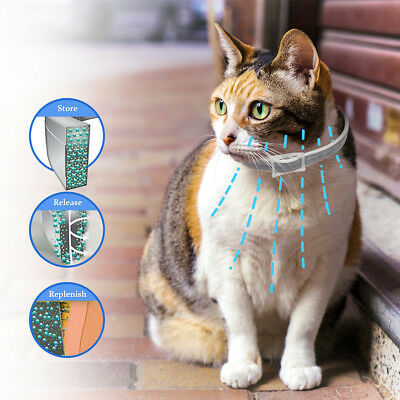 "Allergy Free 25"" Flea & Tick Collar for Cats 6 Months Protection Waterproof"