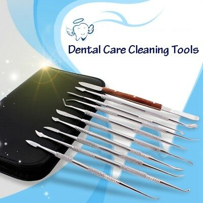 10 Pcs/Set Stainless steel Dental Lab Equipment Wax Carving Tools Dentist I H7S8