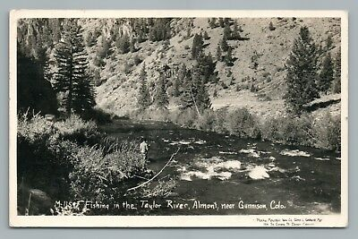 Fly Fishing—Almont CO Taylor River RPPC Rare Vintage GUNNISON County Photo 1953