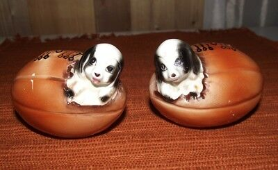 Vintage 1960's Porcelain Puppy In A Football Matching Salt and Pepper Shaker Set